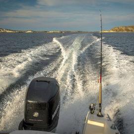 norskyraj-rybolov-1